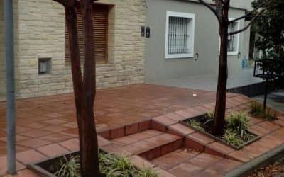 El Municipio recuerda que está prohibida la poda de árboles en forma particular