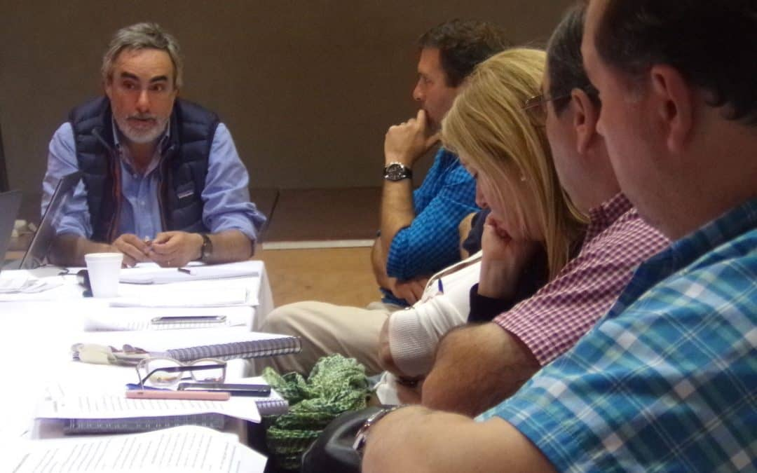 El Comité de Cuenca designó a Pablo Vicente como técnico