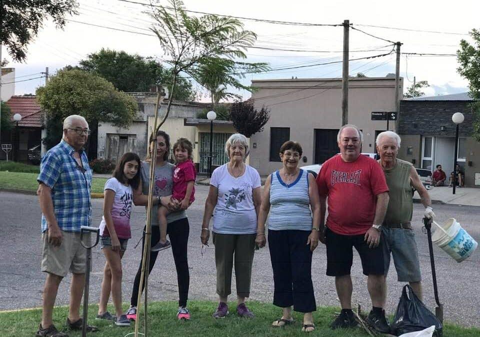 AMIGOS DE PLAZA BRITANICA REPONEN TRES JACARANDAS