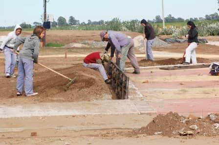 Una cooperativa trabaja en el sector sur