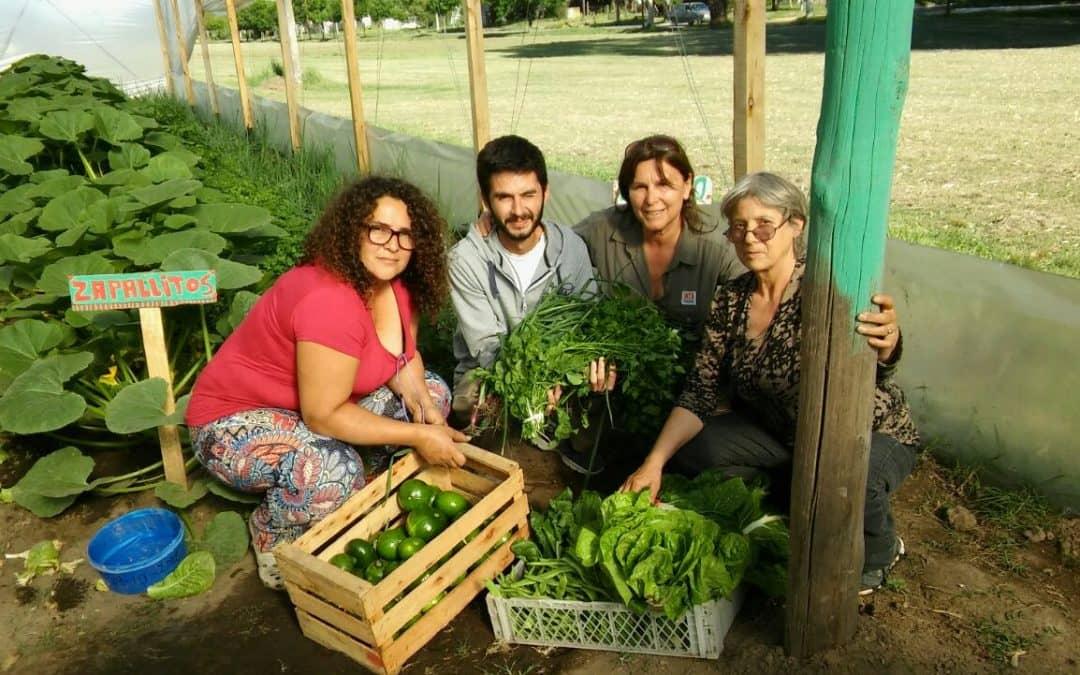 """Productores de """"El Gancho"""" venderán verduras orgánicas en Berutti"""