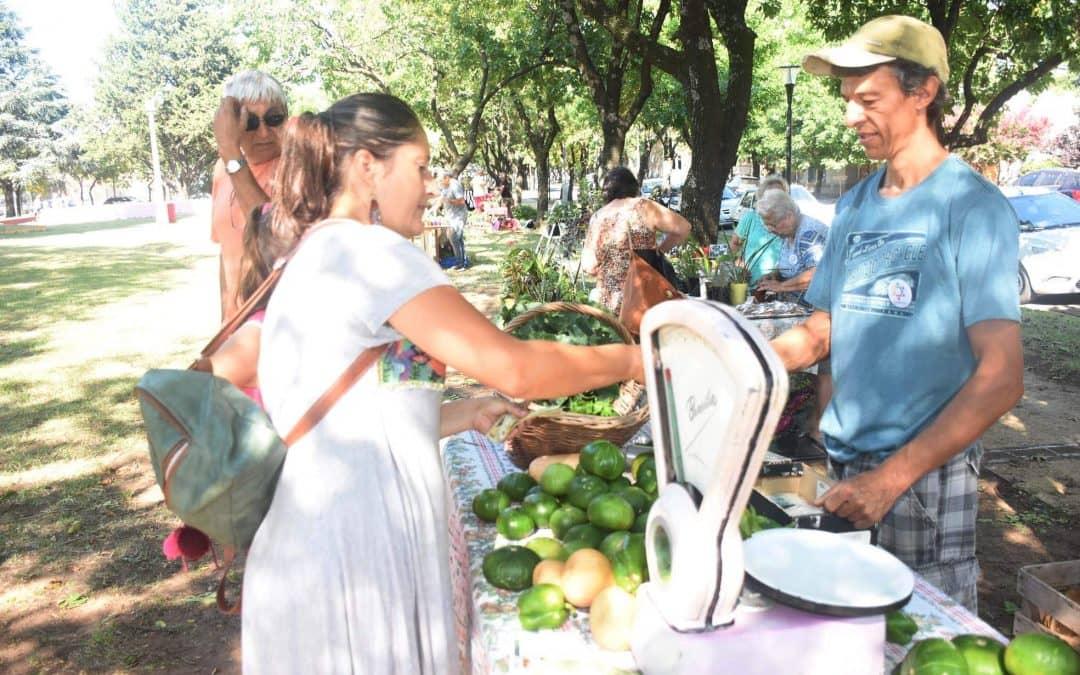 LA FERIA ECOFINES VERDE ESTARÁ MAÑANA (SÁBADO) CON PRODUCTOS DE HUERTA, HUEVOS, INSUMOS Y PLANTAS