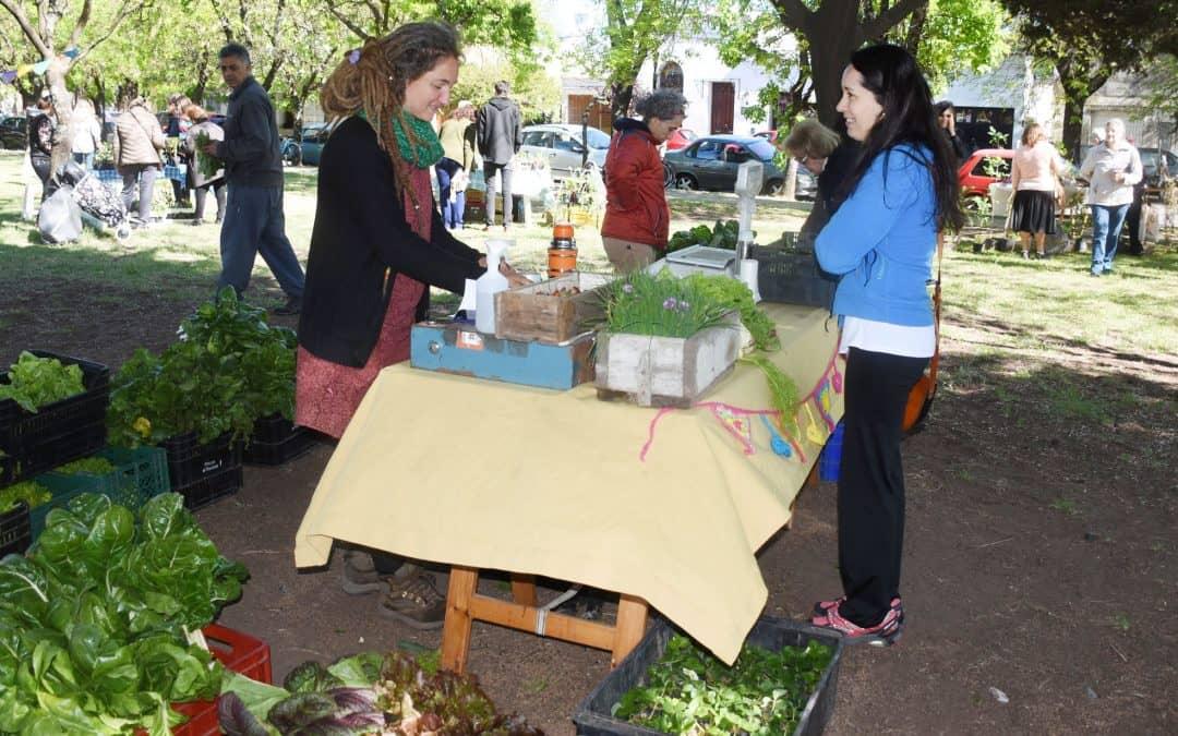Este sábado (17) se realizará una nueva feria EcoFines verde