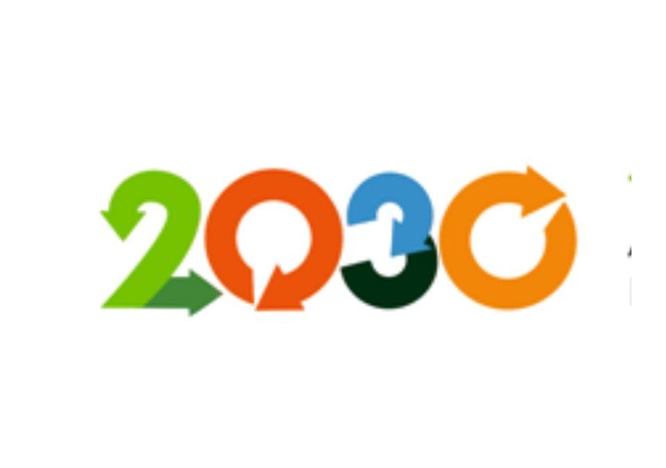 AGENDA 2030: LA INSERCIÓN DE LOS JÓVENES AL MUNDO DEL TRABAJO FUE LA IDEA MÁS VALORADA EN LA ENCUESTA