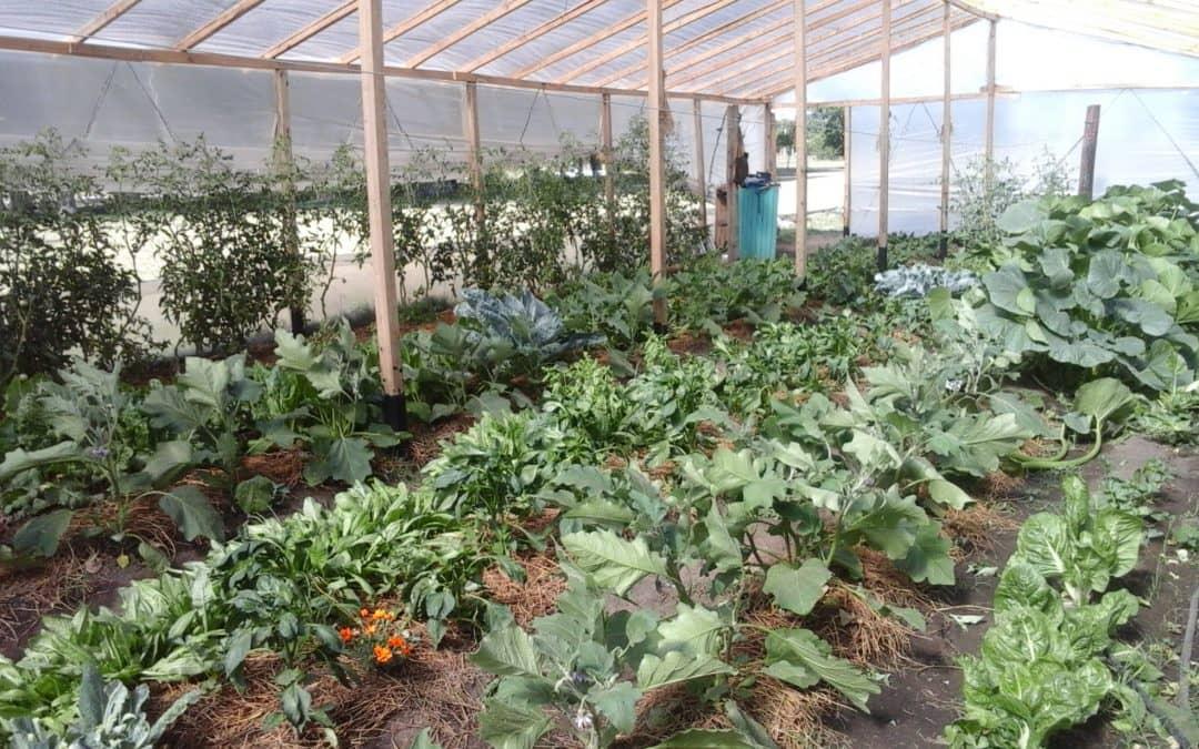 Lanzamiento del Programa AgroEmprende en Trenque Lauquen