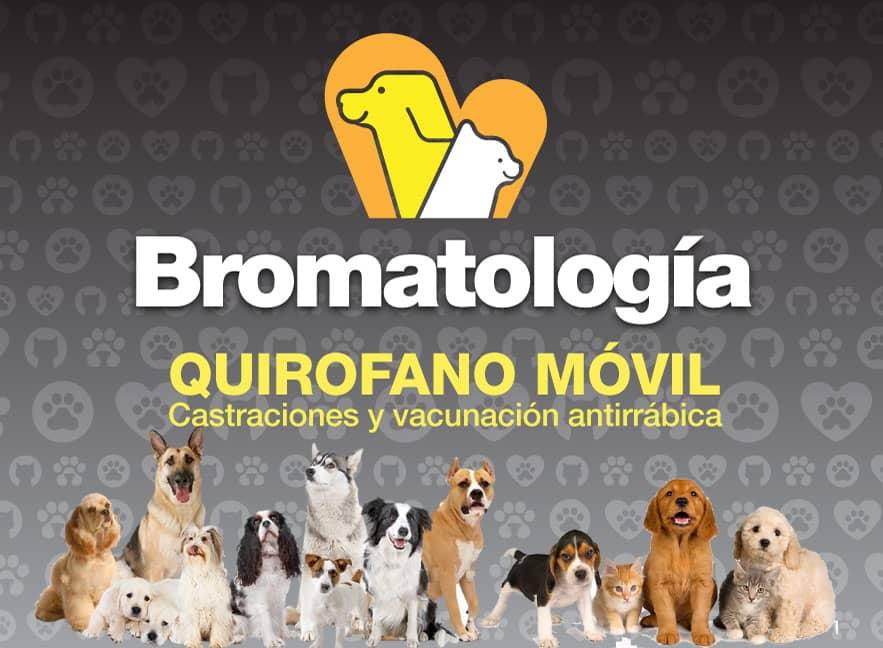 Nuevo número de teléfono para Casilla Bromatológica