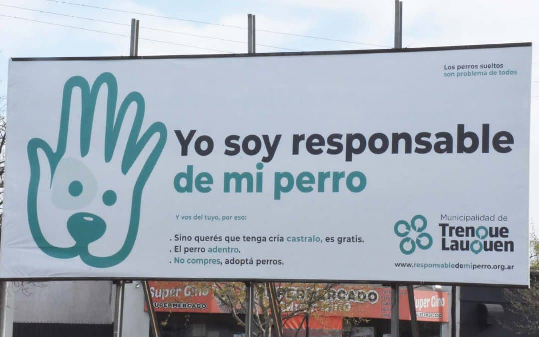 """""""YO SOY RESPONSABLE DE MI PERRO"""", LA CAMPAÑA QUE IMPULSA EL MUNICIPIO JUNTO A DISTINTOS SECTORES DE LA COMUNIDAD"""