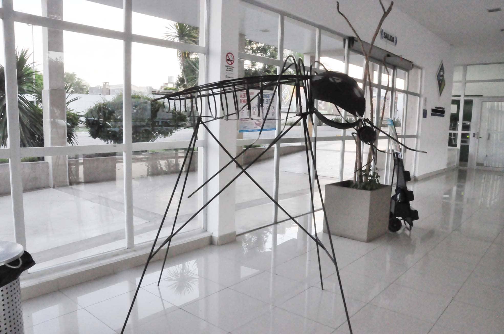 Dengue: Prevención en la ciudad