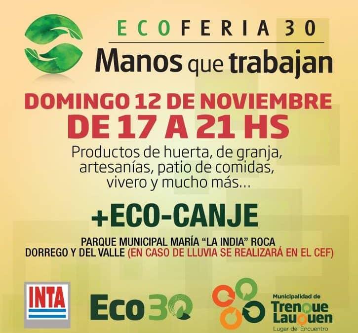 Este domingo habrá EcoFeria en 30 de Agosto