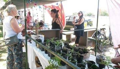 La feria EcoFines celebra este sábado su segundo aniversario