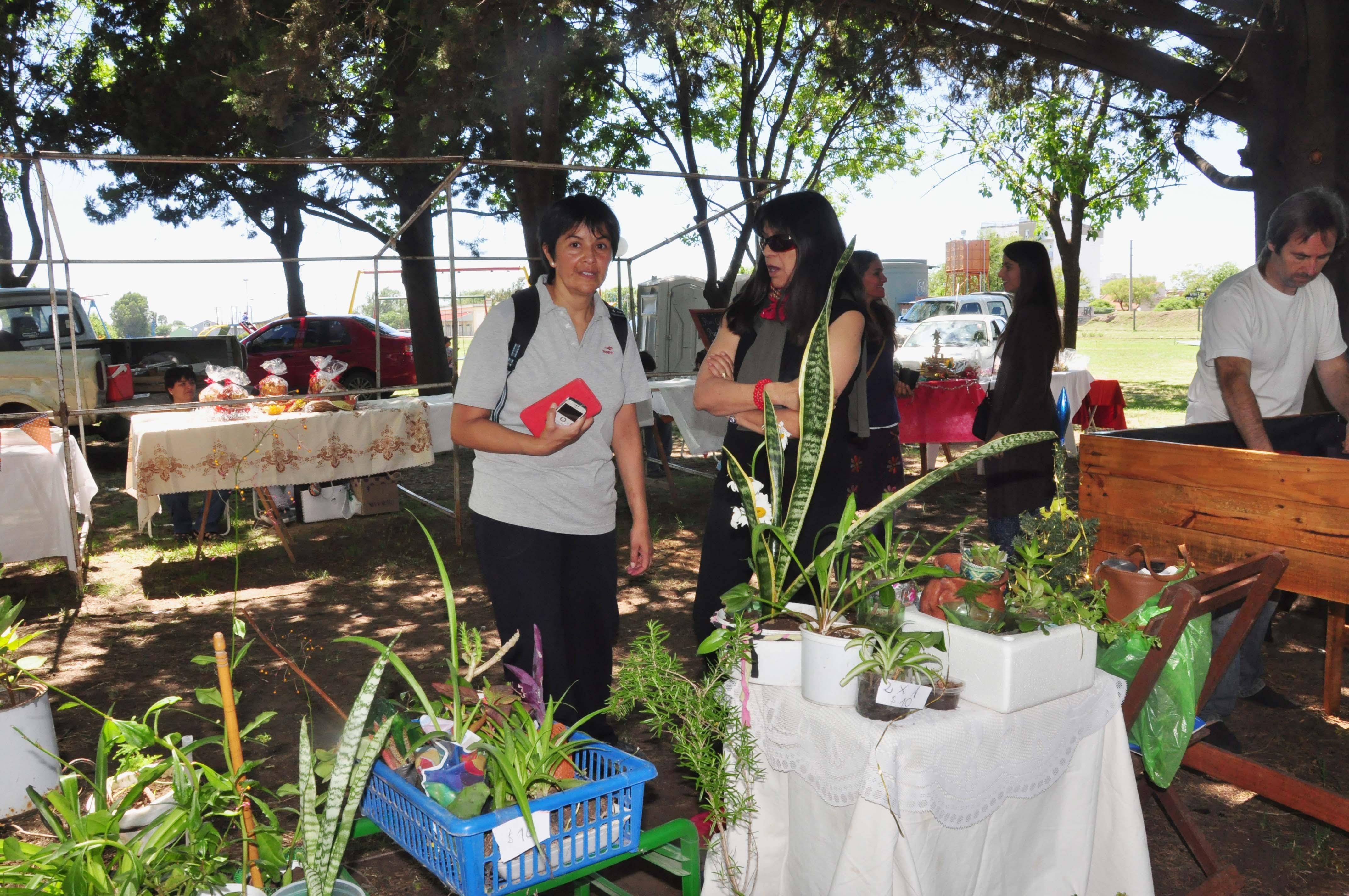 EcoFines: mañana habrá una nueva Feria