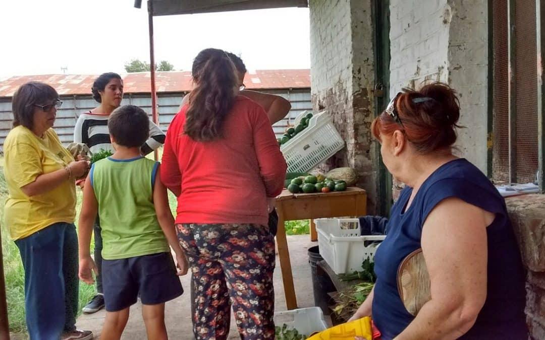"""Los logros de la producción ecológica que fomenta la Unidad """"El gancho"""""""