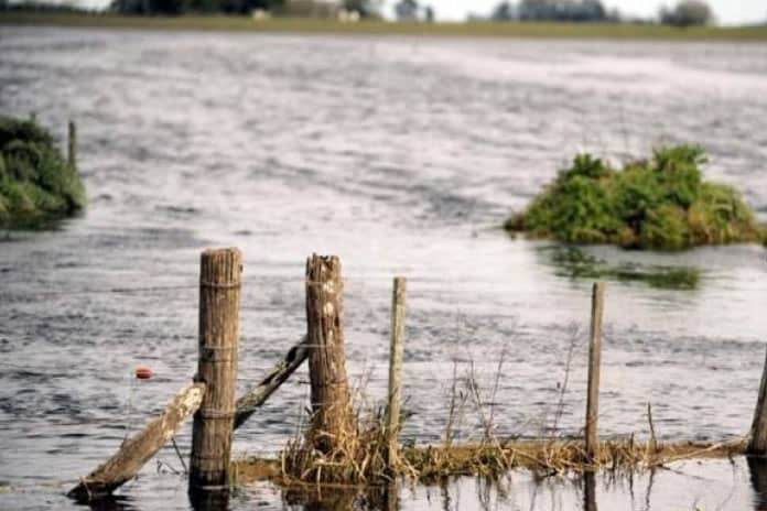 EL GOBIERNO PROVINCIAL PRORROGÓ EL ESTADO DE EMERGENCIA AGROPECUARIA PARA EL DISTRITO DE TRENQUE LAUQUEN