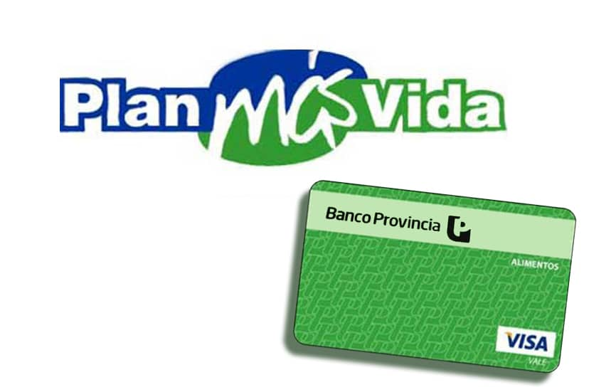 Plan Más vida: las beneficiarias deben presentar documentación