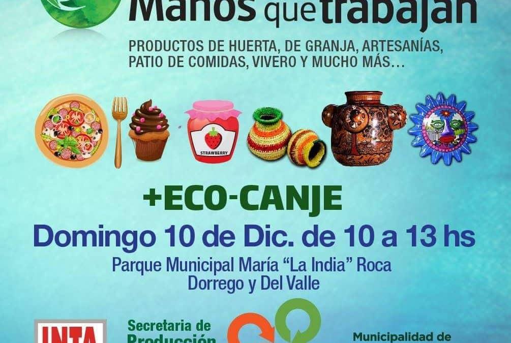 Se realizará una nueva Eco Feria en 30 de Agosto