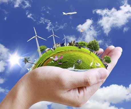 Actividades en el marco del Día Mundial del Medio Ambiente