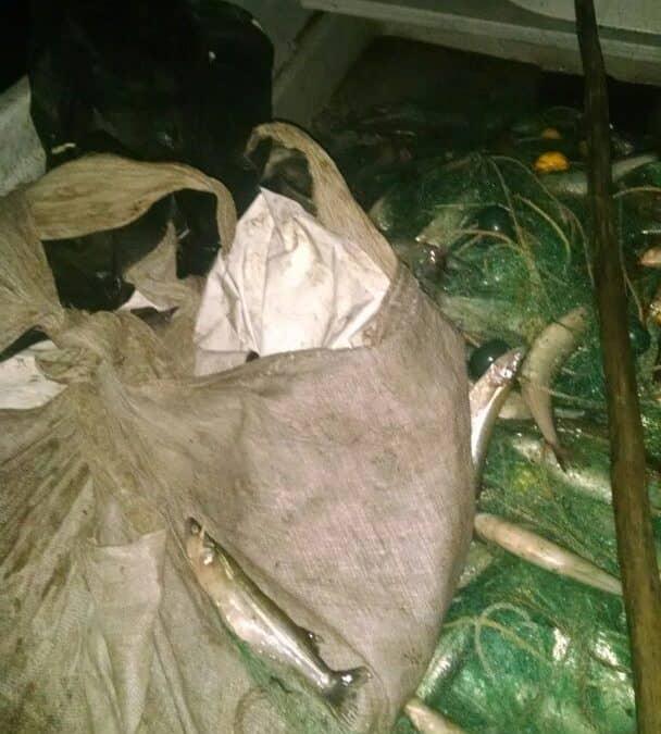 Se realizó otro operativo contra la pesca clandestina en Cuero de Zorro