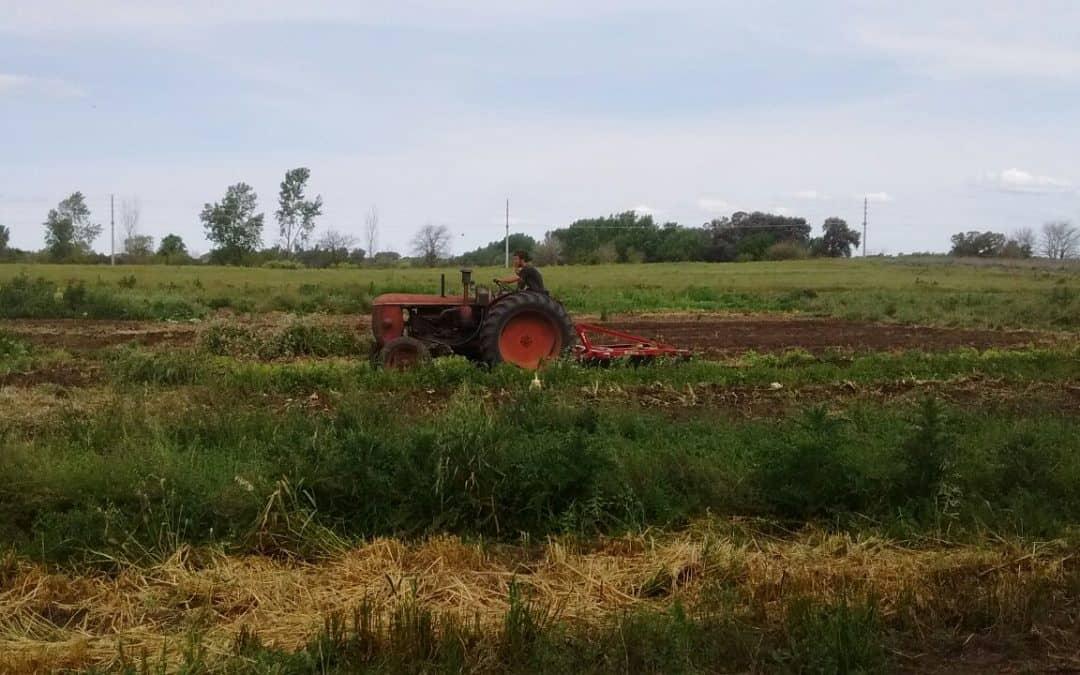 Productores periurbanos en transición a la agroecología