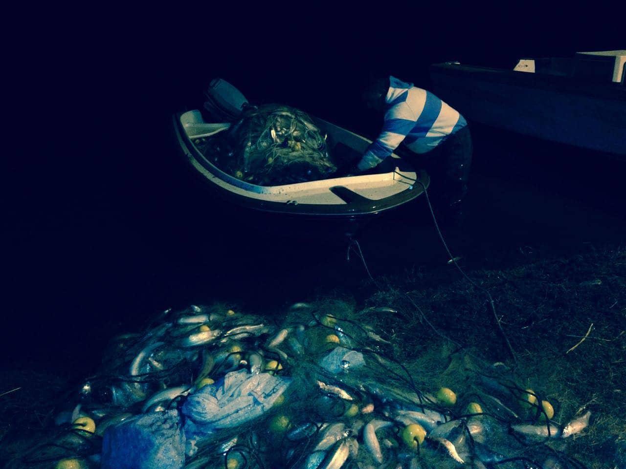Golpe a la pesca clandestina: se secuestraron redes y casi 500 kilos de pescado