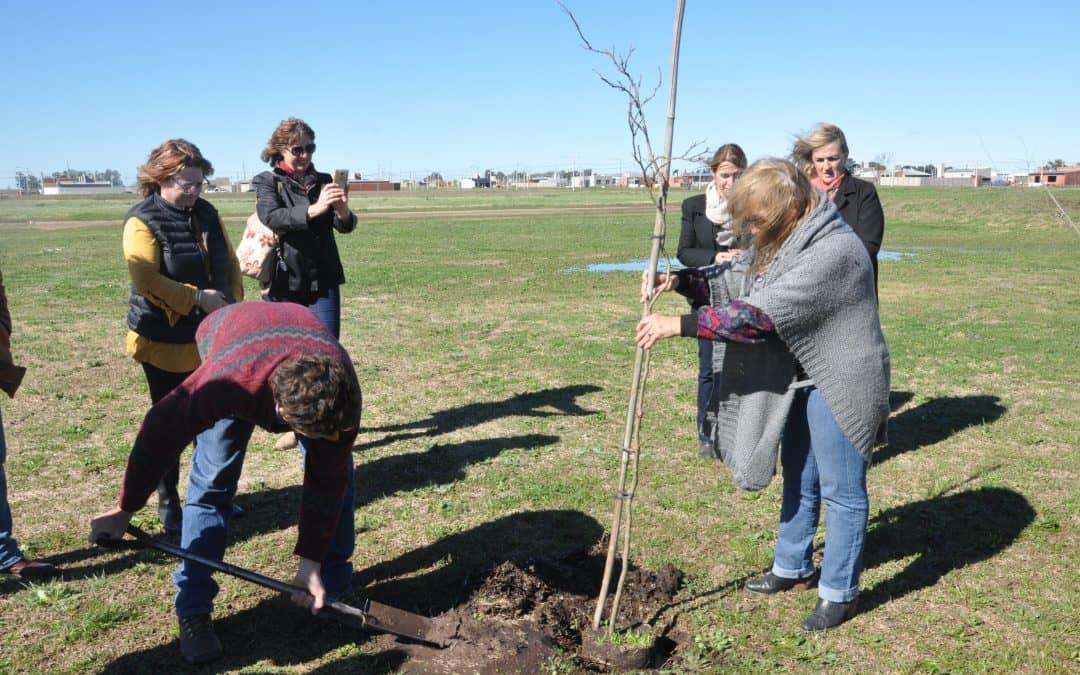 Se inaugurará un espacio con 100 árboles en la Ampliación Urbana
