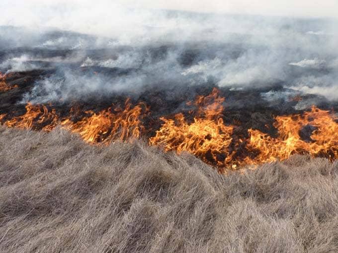 Solicitan cuidados básicos para evitar incendios
